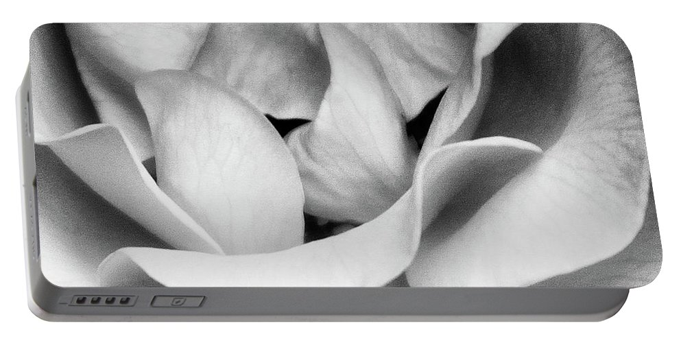 Rose Portable Battery Charger featuring the photograph Sapphire Rose Bw Palm Springs by William Dey