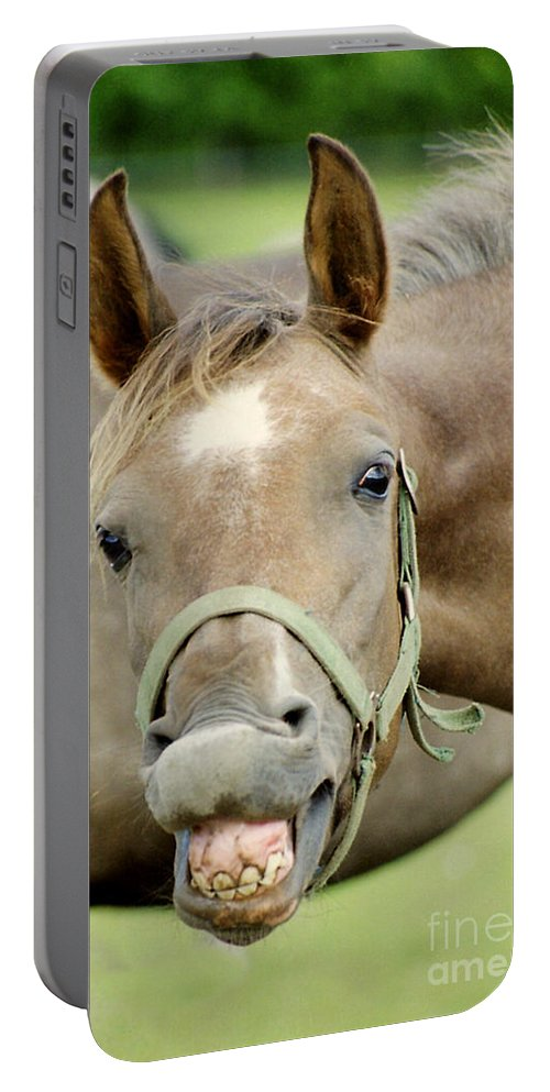 Horse Portable Battery Charger featuring the photograph Say Cheese by Angel Ciesniarska
