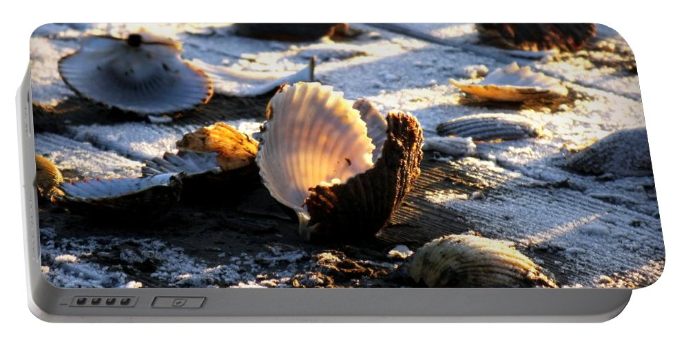 Scallops Portable Battery Charger featuring the photograph Half Shell On Ice by Karen Wiles
