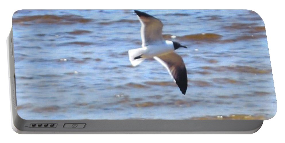 In Flight                         Portable Battery Charger featuring the photograph Sea Bird by Robert Floyd