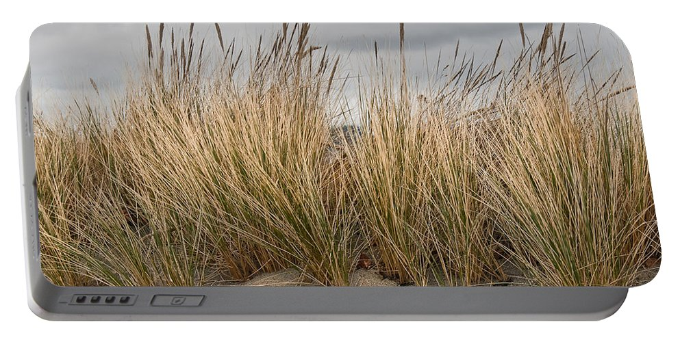 Beauty In Nature Portable Battery Charger featuring the photograph Sea Grass And Sand by Jeff Goulden