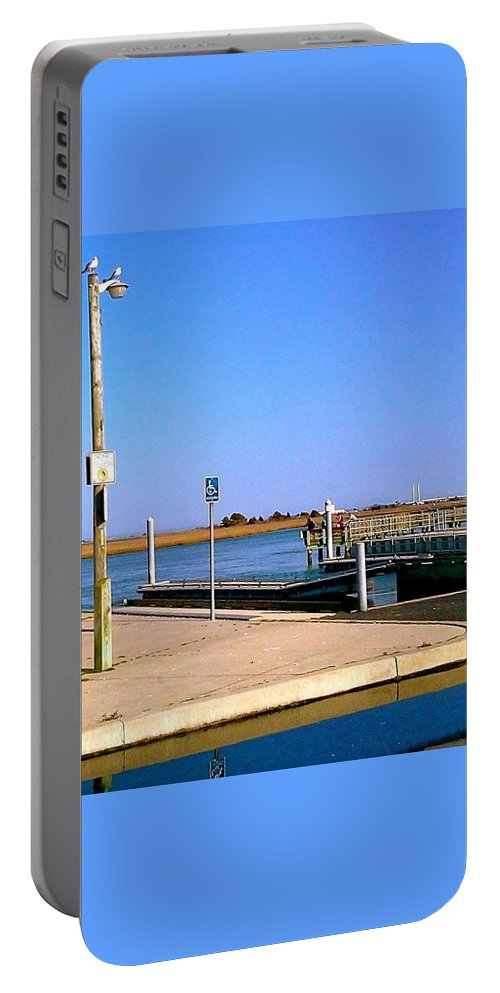 Seagulls Portable Battery Charger featuring the photograph Sea Gulls Watching Over The Wetlands by Chris W Photography AKA Christian Wilson