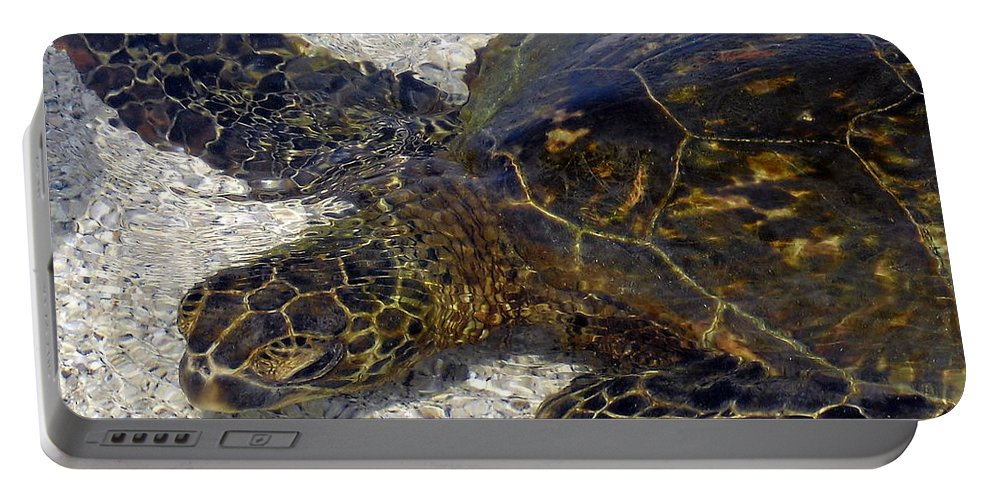 Turtle Portable Battery Charger featuring the photograph Sea Life by Athala Bruckner