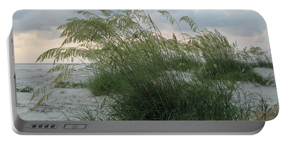 Sea Oats Portable Battery Charger featuring the photograph Sea Oats by Carol Luzzi