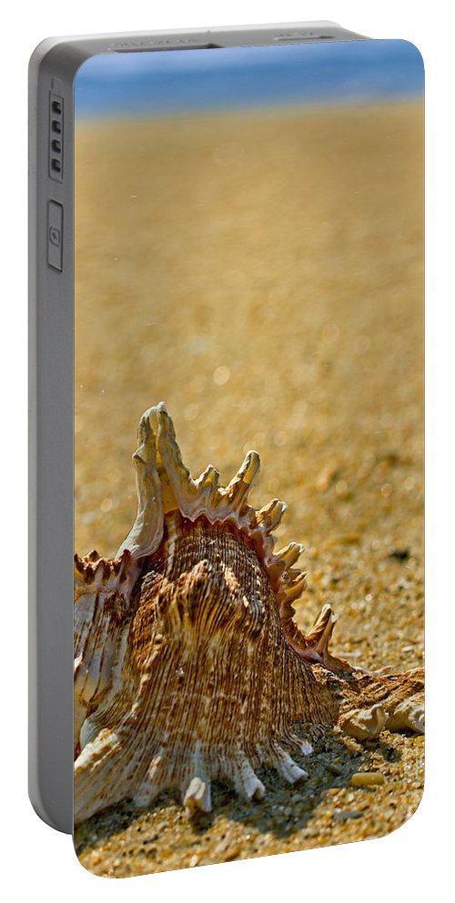 Sea Shell Portable Battery Charger featuring the photograph Sea Shell By The Sea Shore by Tom Gari Gallery-Three-Photography