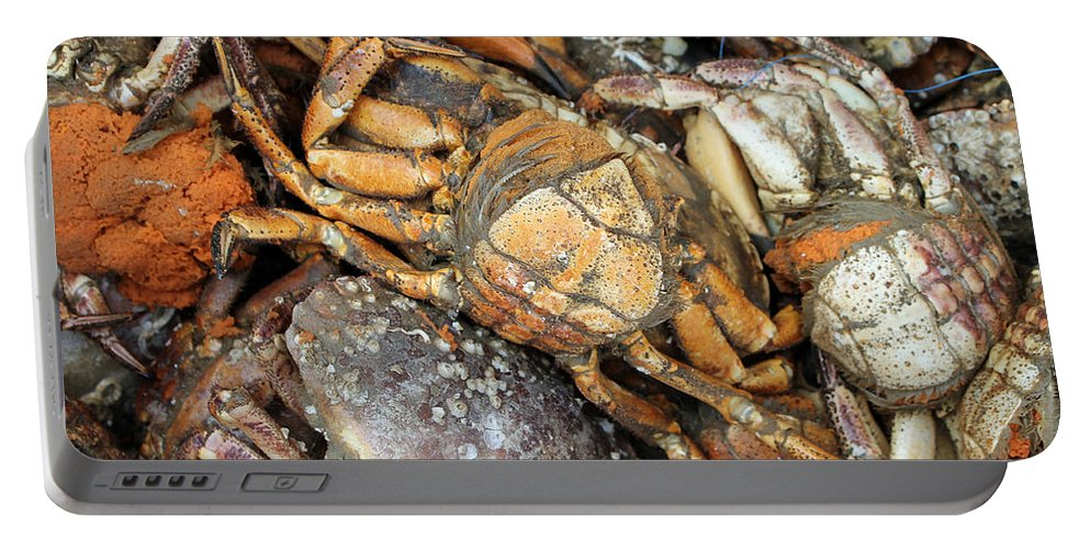 Crayfish Ocean Market Fresh Crab Crustacean Photograph Sea Seafood Scissors Portable Battery Charger featuring the photograph Seafood by Steve K