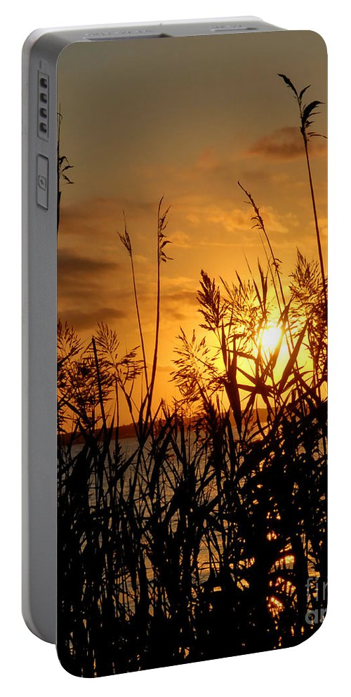 Portrait Portable Battery Charger featuring the photograph Seagrass by Sami Martin