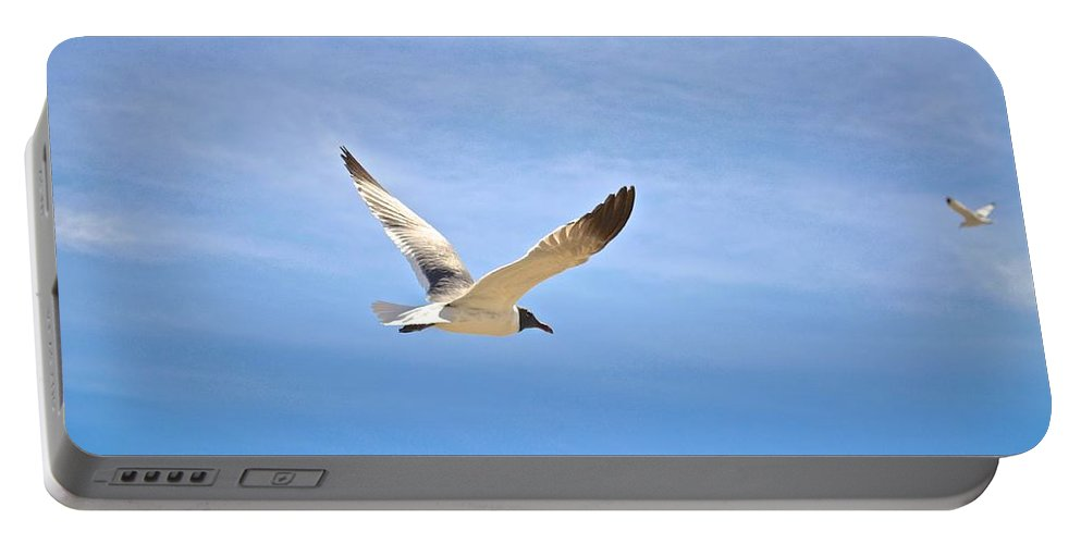 Seagull Portable Battery Charger featuring the photograph Seagull In Flight by Kristina Deane