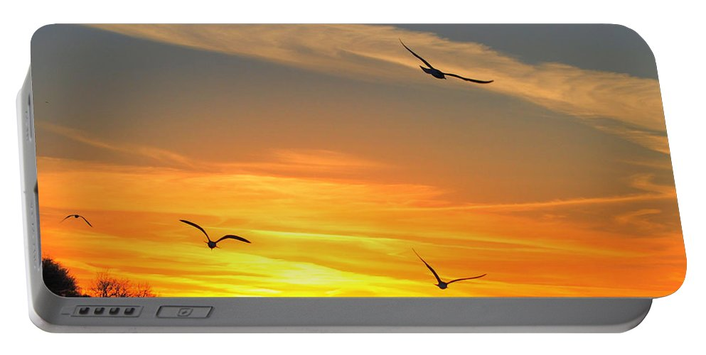 Seagul Portable Battery Charger featuring the photograph Seagull Serenity by Frozen in Time Fine Art Photography