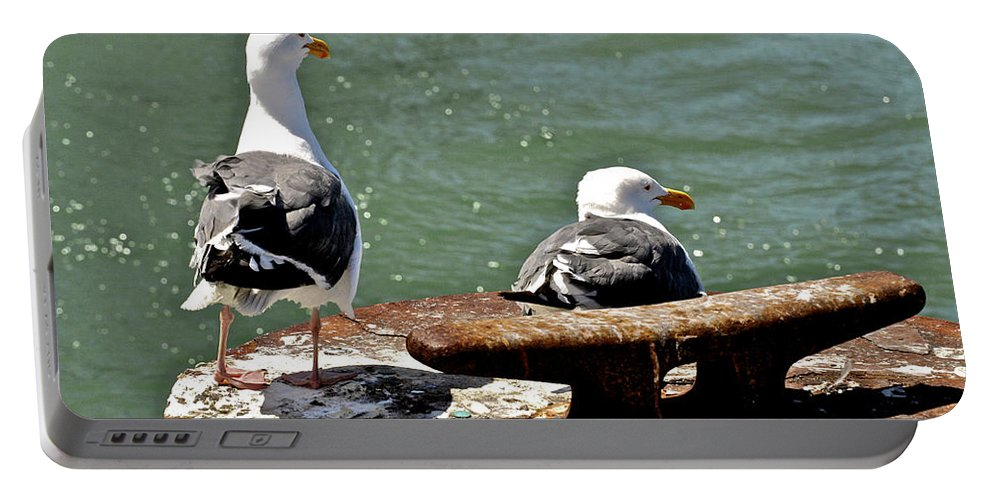 Seagulls Portable Battery Charger featuring the photograph Seagulls Against Rust by SC Heffner