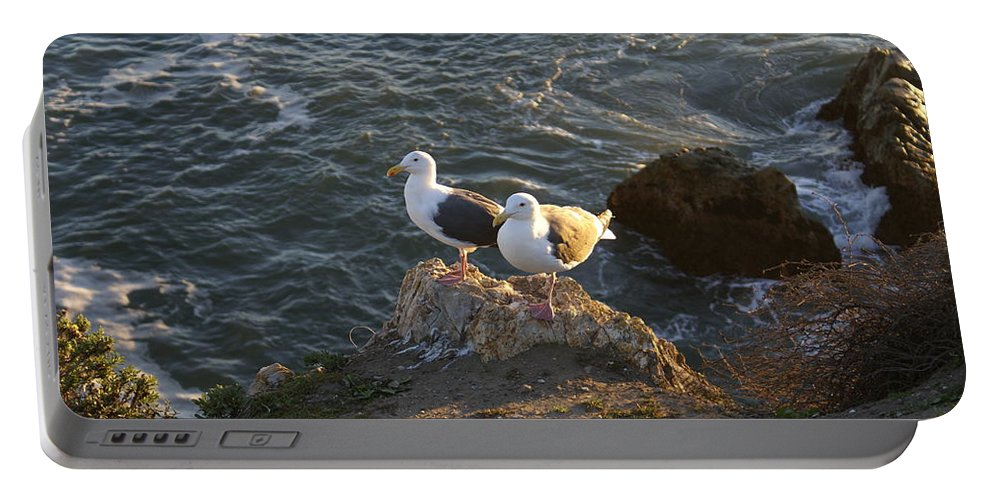 Seagulls Aka Pismo Poopers Portable Battery Charger featuring the digital art Seagulls Aka Pismo Poopers by Barbara Snyder