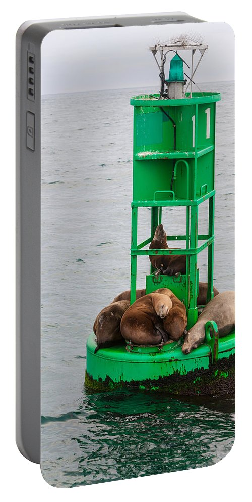Seal Portable Battery Charger featuring the photograph Seal Nap Time by Scott Campbell