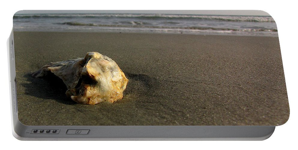 Shell Portable Battery Charger featuring the photograph Seashels By The Seashore by Sarah Houser