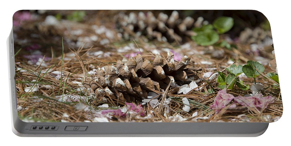 Spring Portable Battery Charger featuring the photograph Seasonal Mix 3684 by Terri Winkler