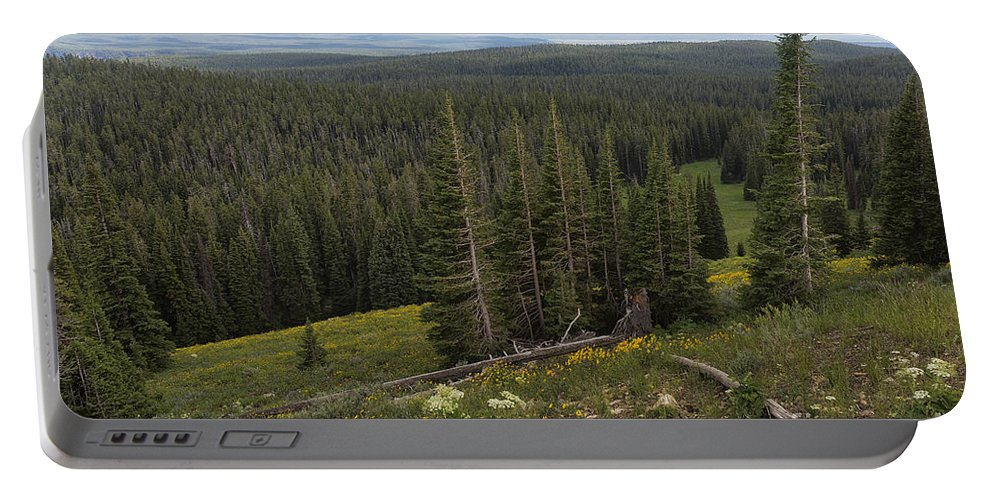 Yellowstone Portable Battery Charger featuring the photograph Seeing Forever - Yellowstone by Belinda Greb