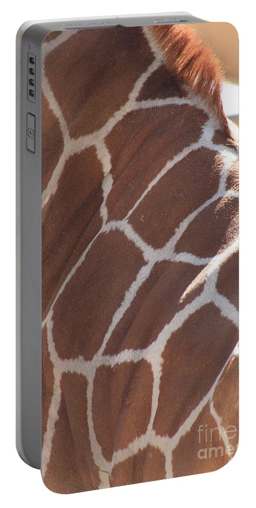 Giraffe Portable Battery Charger featuring the photograph Seeing Spots by Brandi Maher
