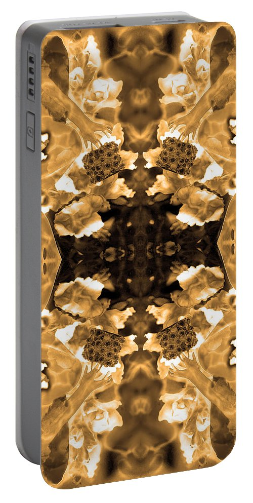 Fairy Patterns Portable Battery Charger featuring the photograph Sepia Bag Fairies 3 by Deprise Brescia