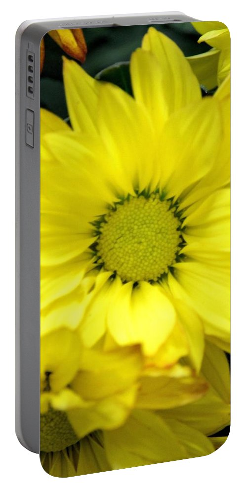 September Yellow Portable Battery Charger featuring the photograph September Yellow by Maria Urso