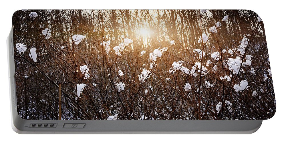 Trees Portable Battery Charger featuring the photograph Setting Sun In Winter Forest by Elena Elisseeva