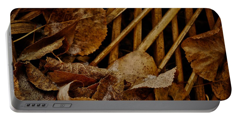 Leaf Portable Battery Charger featuring the photograph Settled Leaves by The Artist Project