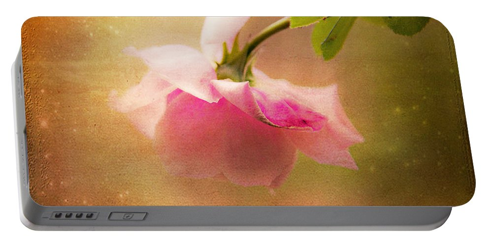 Shabby Chic Art Portable Battery Charger featuring the photograph Shabby Chic Rose Print by Theresa Tahara