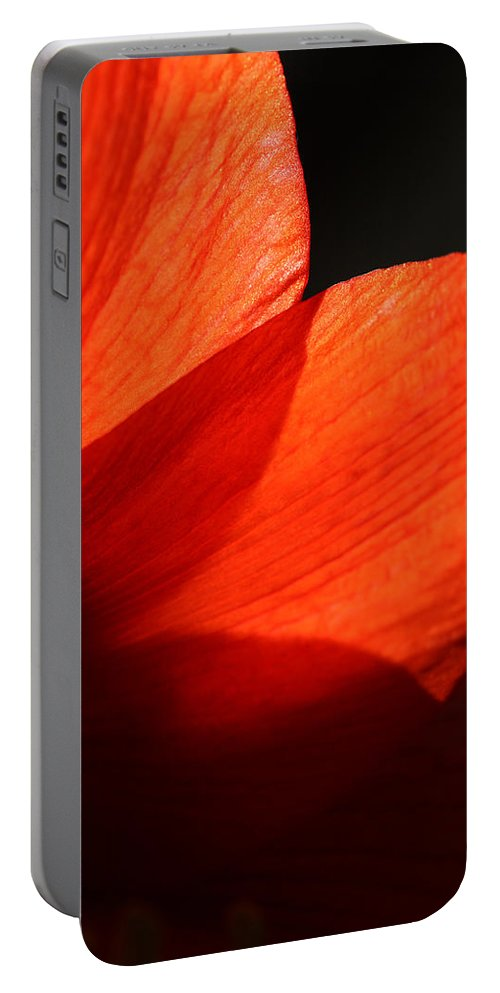 Amaryllis Portable Battery Charger featuring the photograph Shades Of Red by Karol Livote