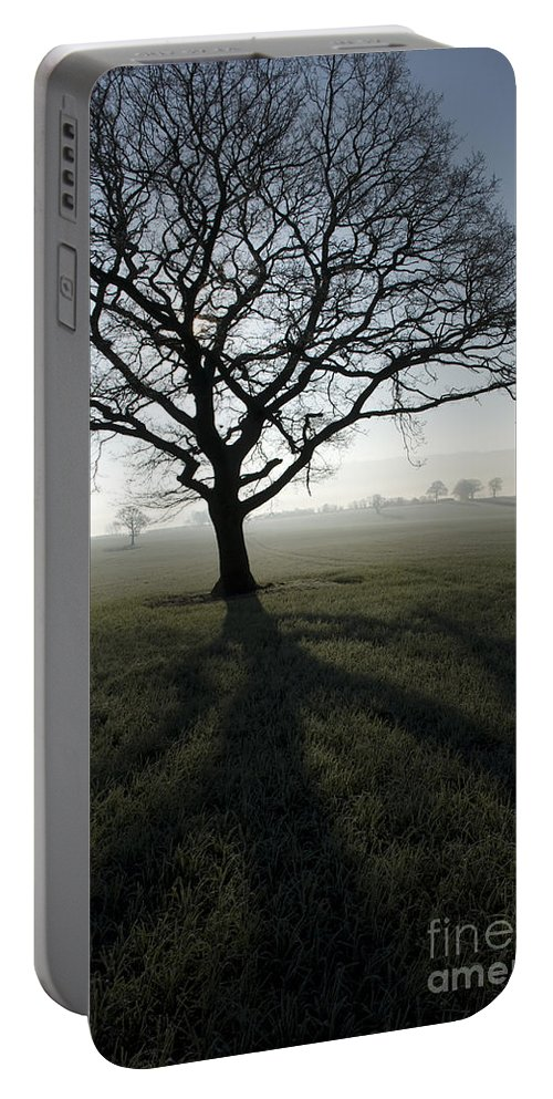 Acton Portable Battery Charger featuring the photograph Shadow Tree by Anne Gilbert
