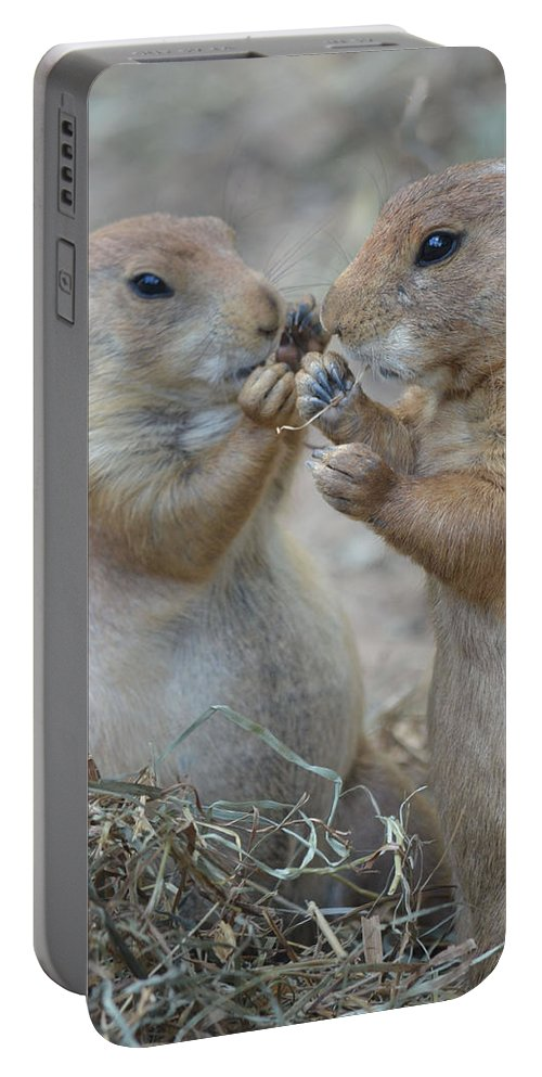 Share Portable Battery Charger featuring the photograph Sharing Is Caring by Richard Bryce and Family