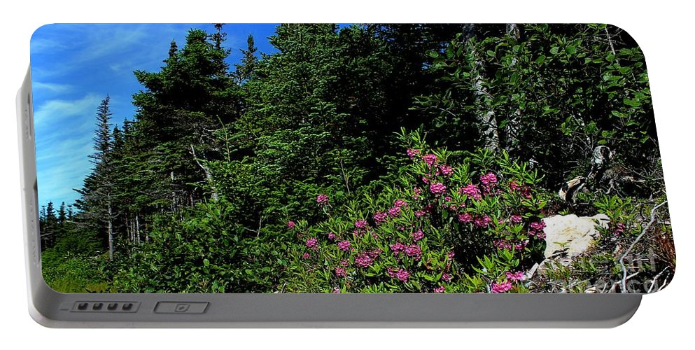Sheep Laurel Shrub Portable Battery Charger featuring the photograph Sheep Laurel Shrub by Barbara Griffin