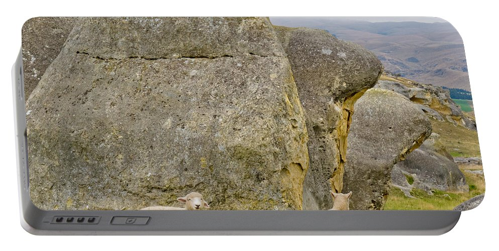 South Island Portable Battery Charger featuring the photograph Sheep On A Mountain Pasture Between Granite Rocks by Stephan Pietzko