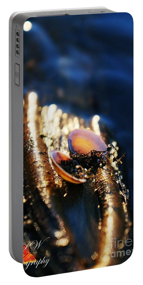Shells Portable Battery Charger featuring the photograph Shell By The River by Jannice Walker