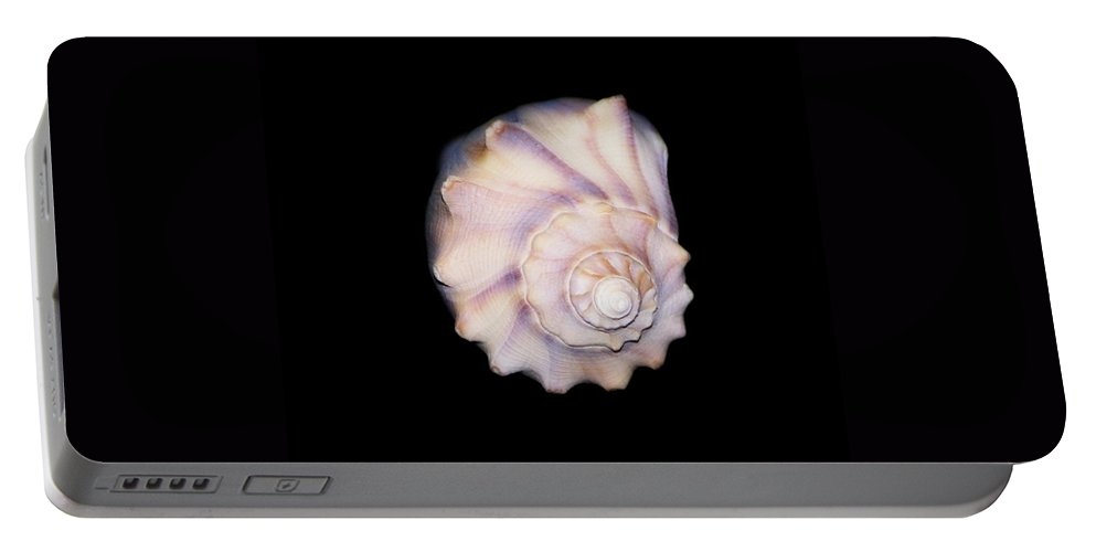 Photo Portable Battery Charger featuring the photograph Shell Solo IIII by Laurie Pike