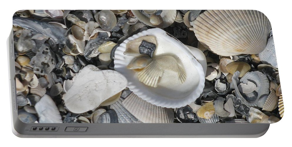 Landscape Portable Battery Charger featuring the photograph Shells In Shells 1 by Ellen Meakin