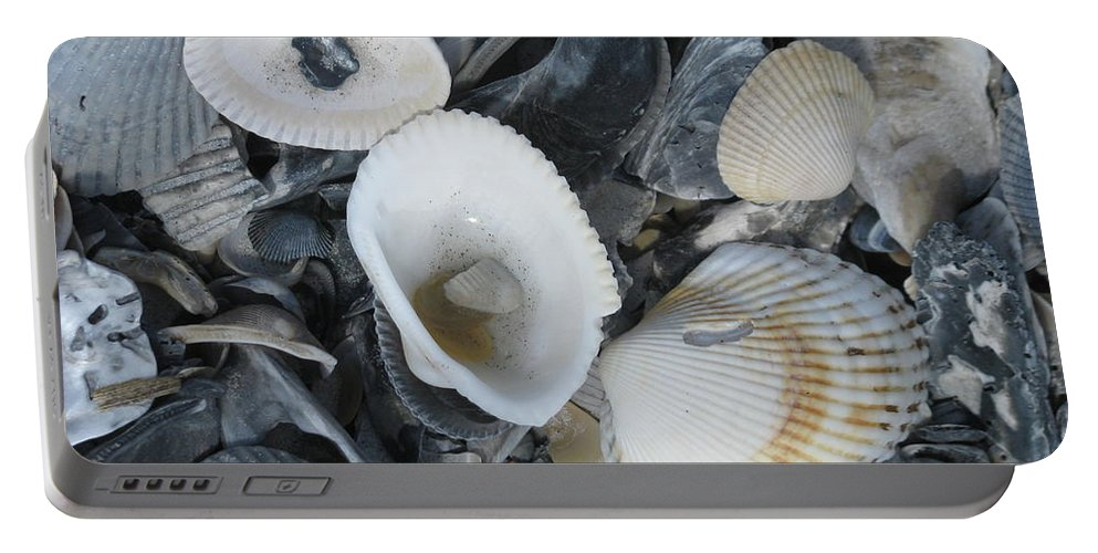 Landscape Portable Battery Charger featuring the photograph Shells In Shells 2 by Ellen Meakin