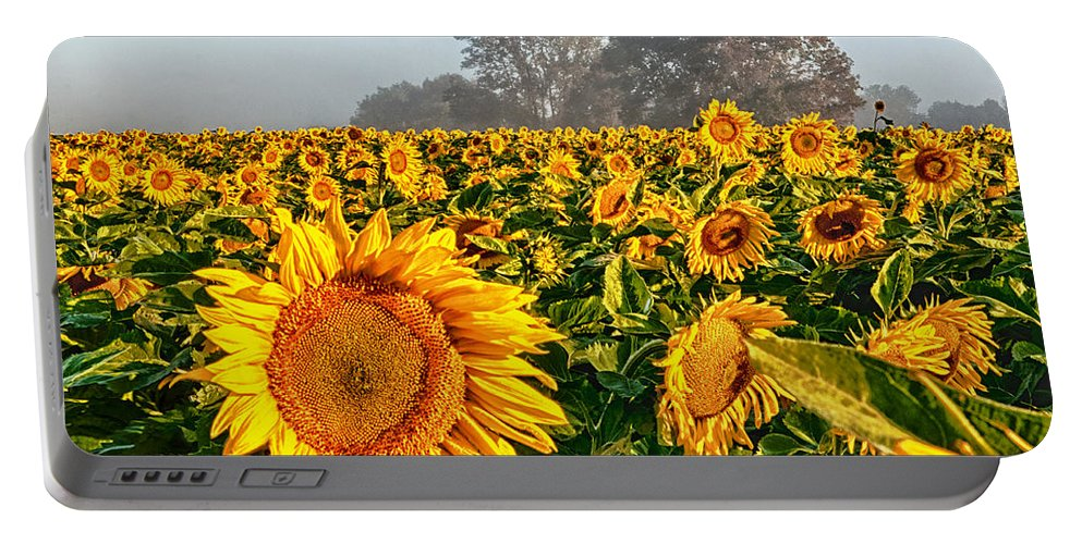 Sunflower Portable Battery Charger featuring the photograph Shine Bright by Ryan Crane