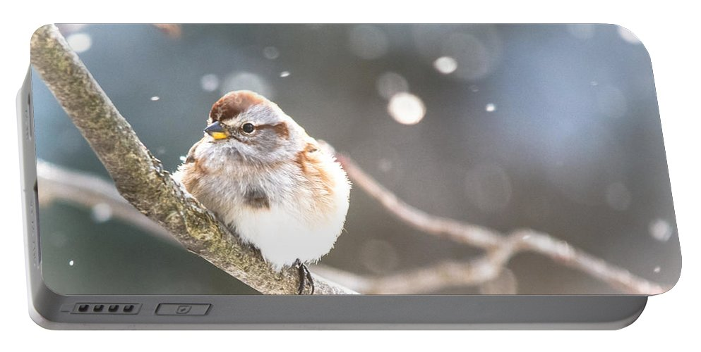 Portable Battery Charger featuring the photograph Shiny Tree Sparrow by Cheryl Baxter