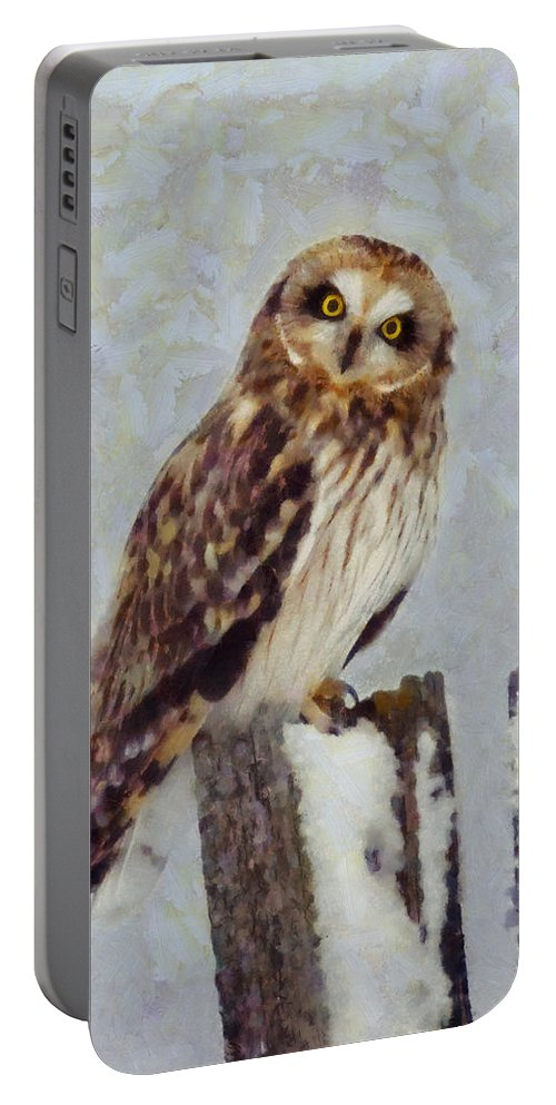 Short Eared Owl Portable Battery Charger featuring the digital art Short-eared Owl  by Mark Kiver