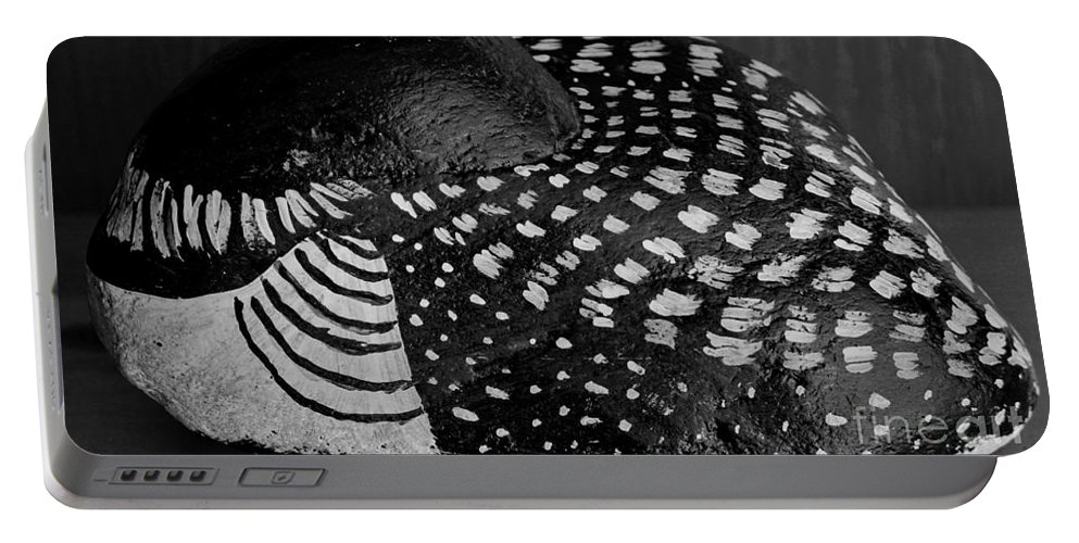 Shy Loon Portable Battery Charger featuring the photograph Shy Loon - Painted Rock - Seabird - One Of A Kind by Barbara Griffin