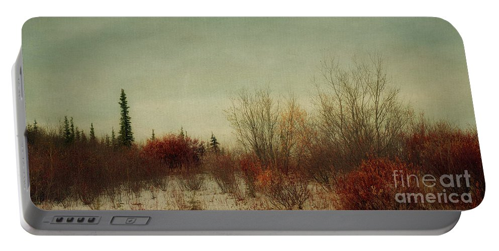 Moody Portable Battery Charger featuring the photograph Signs Of Winter by Priska Wettstein