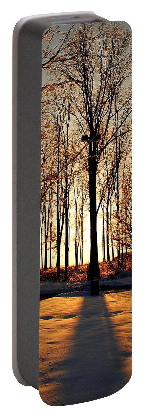 Silhouette Portable Battery Charger featuring the photograph Silhouette Of Trees And Ice by Frozen in Time Fine Art Photography