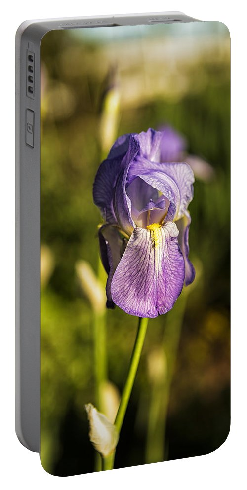 Iris Portable Battery Charger featuring the photograph Silkscreen by Belinda Greb