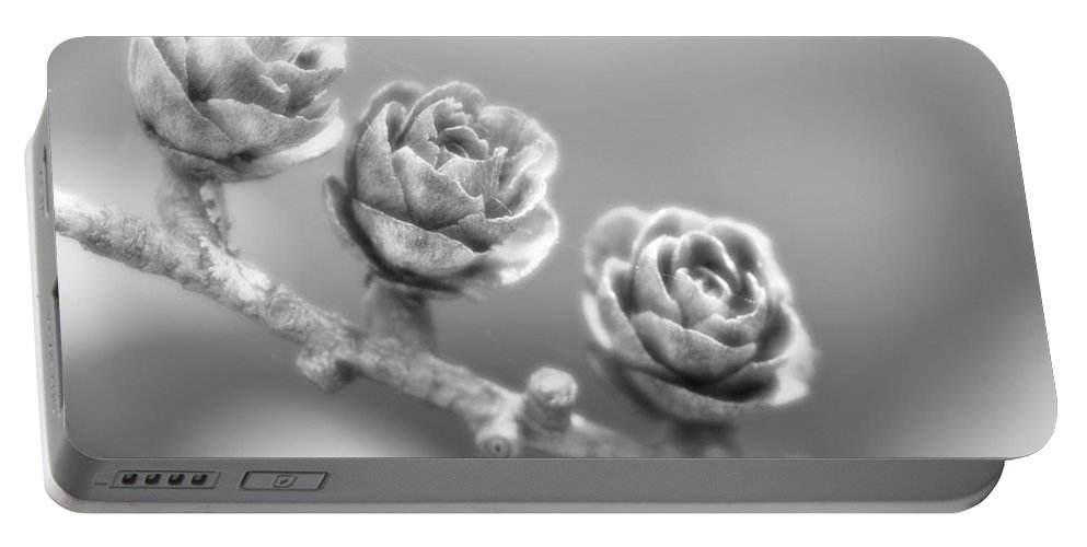 Festblues Portable Battery Charger featuring the photograph Silver Lining.... by Nina Stavlund