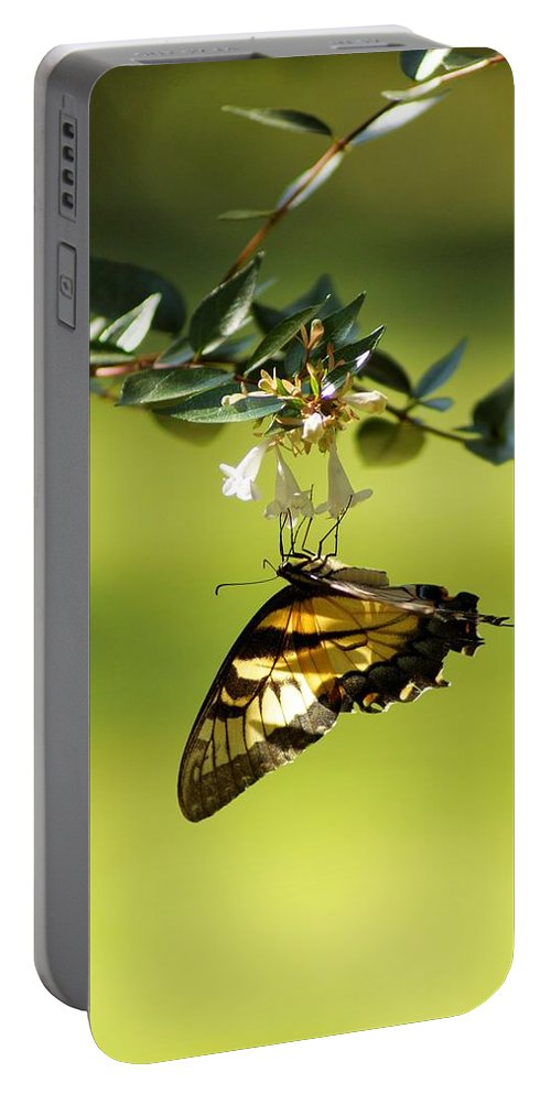 Butterfly Portable Battery Charger featuring the photograph Simple Elegance by Jean Goodwin Brooks