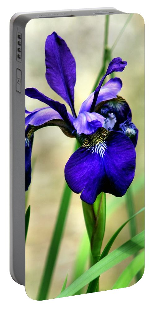 Carol R Montoya Portable Battery Charger featuring the photograph Single And Beautiful by Carol Montoya