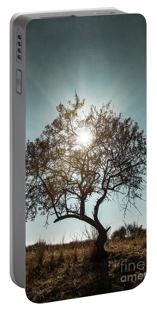 Dark Portable Battery Charger featuring the photograph Single Tree by Carlos Caetano