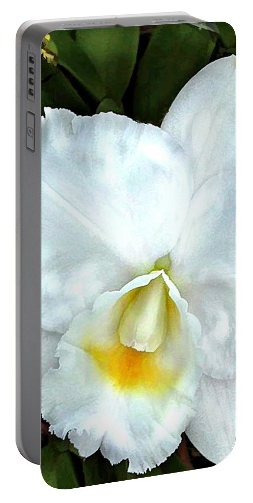 Orchid Portable Battery Charger featuring the painting Single White Cattleya Orchid by Elaine Plesser