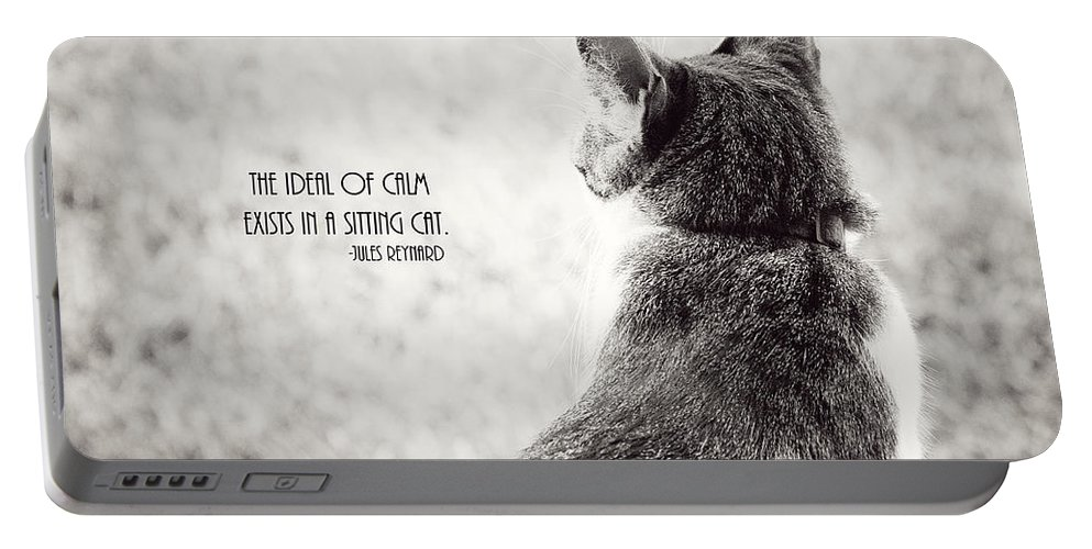Cat Portable Battery Charger featuring the photograph Sitting Cat by Pam Holdsworth