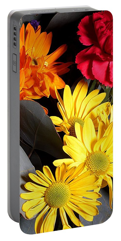 Daisy Portable Battery Charger featuring the photograph Six Dasies And A Carnation by Joe Kozlowski