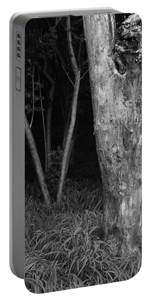 Thick Portable Battery Charger featuring the photograph Skc 2975 Thick And Thin by Sunil Kapadia