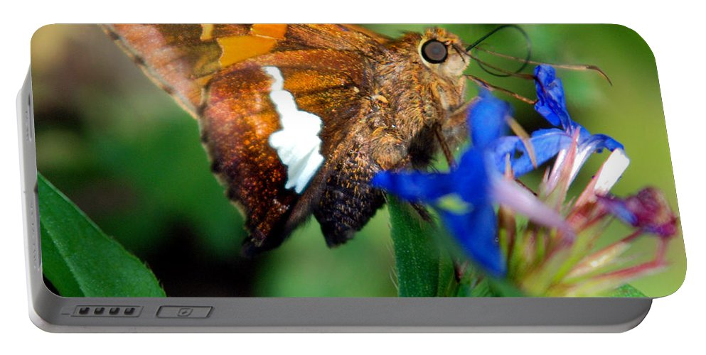 Optical Playground By Mp Ray Portable Battery Charger featuring the photograph Skipper by Optical Playground By MP Ray